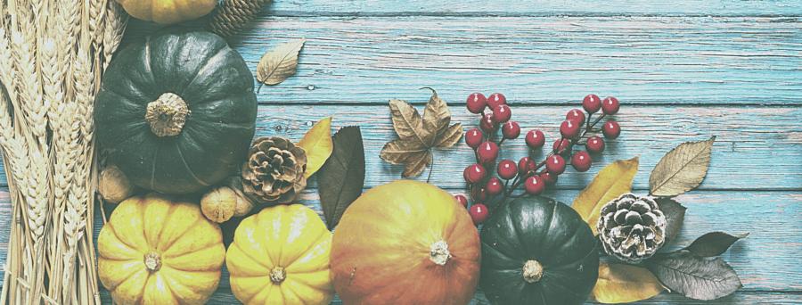 Essentials for the Thanksgiving Season