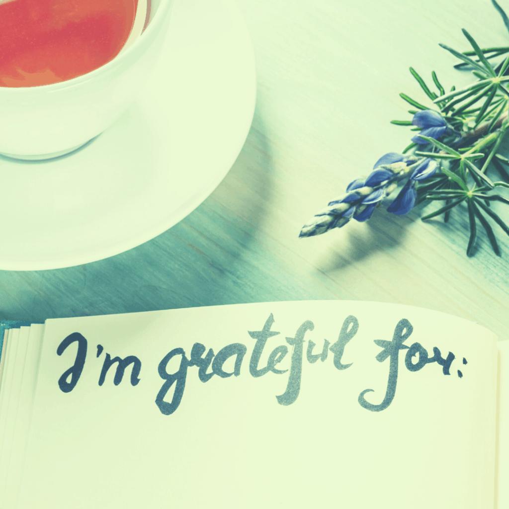 Being Grateful This Thanksgiving